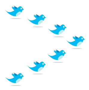 twitter-formation
